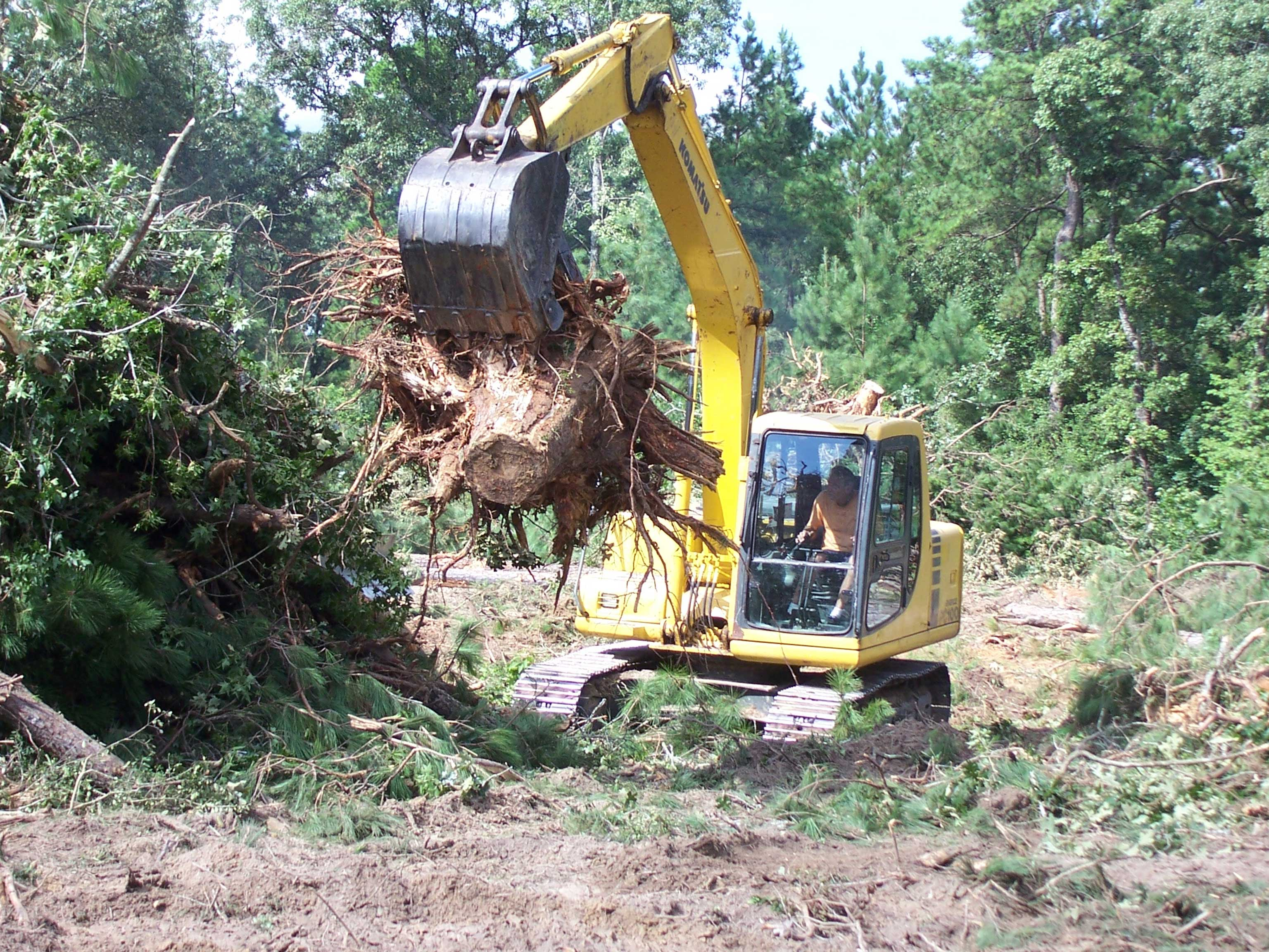 Residential Clearing of Land