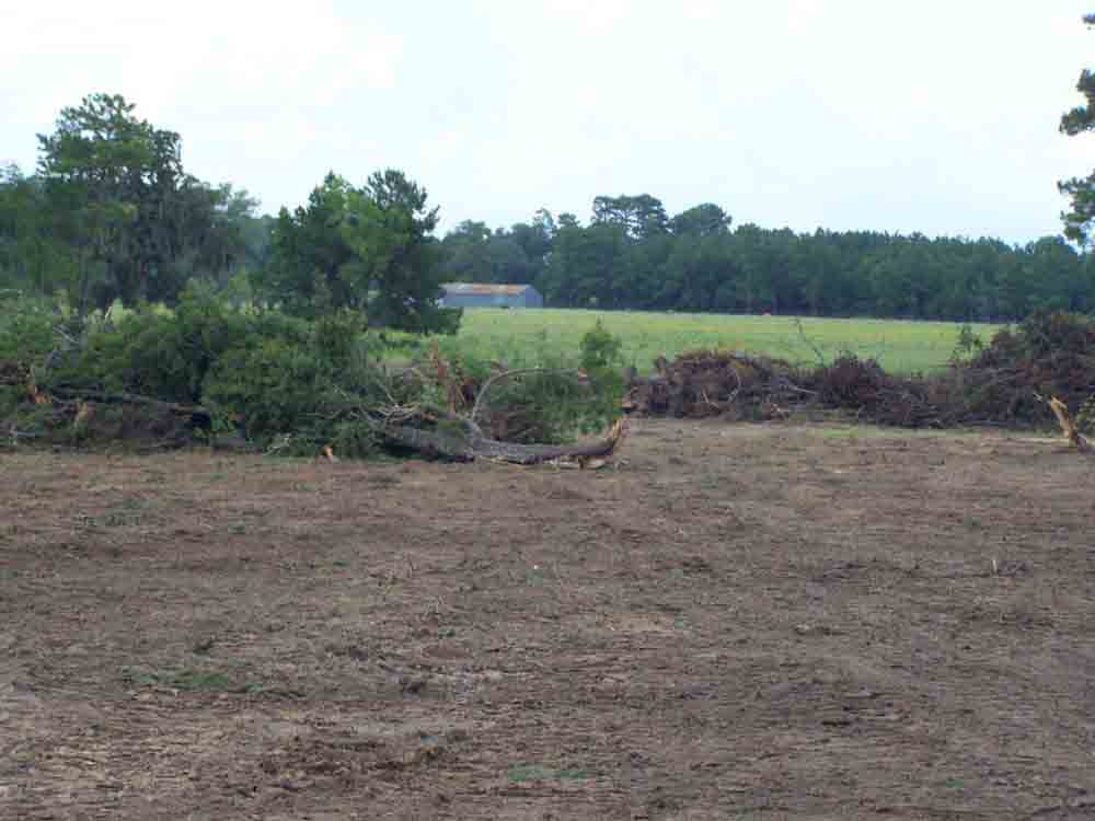 Residential Land Clearing In Magnolia Tx